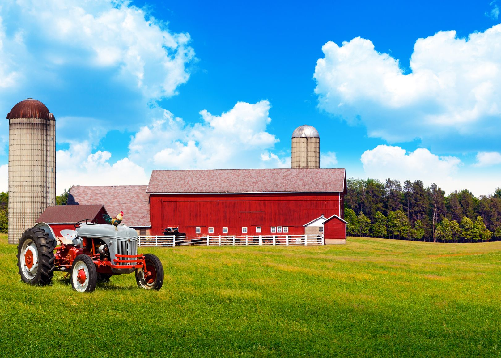 Baltimore Farm & Ranch Insurance